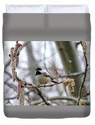 Black-capped Chickadee 20120321_39a Duvet Cover