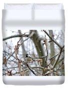 Black-capped Chickadee 20120321_39b Duvet Cover