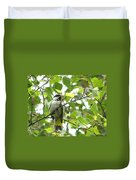 Black Capped Chickadee  Duvet Cover