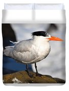 Black Crested Gull Duvet Cover