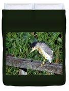 Black Crown Night Heron Scratching Duvet Cover