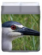 Black-crowned Night-heron Duvet Cover