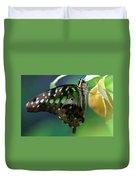 Black Green Tailed Jay 2 Duvet Cover