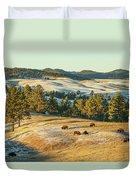Black Hills Bison Before Sunset Duvet Cover