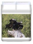 Black Kite Duvet Cover