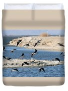 Black-necked Stilts In Flight  Duvet Cover