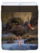 Black Oyster Catcher Duvet Cover
