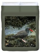 Black Oystercatcher Duvet Cover