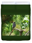 Black Redstart Duvet Cover