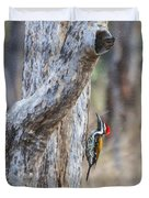 Black-rumped Flameback Aka Lesser Goldenback Duvet Cover