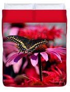Black Swallowtail Butterfly On Coneflower Square Duvet Cover