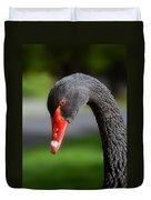 Black Swan Portrait Duvet Cover
