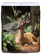 Black-tailed Deer Duvet Cover