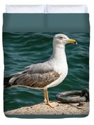 Black Tailed Gull On Dock Duvet Cover