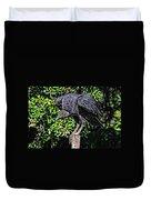 Black Vulture On A Fence Post Duvet Cover