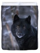 Black Wolf Portrait Duvet Cover