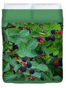 Blackberries 1 Duvet Cover