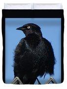 Blackbird On Chain Link Fence Duvet Cover