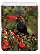 Blackbird Red Berries Duvet Cover
