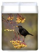 Blackbird Yellow Berries Duvet Cover