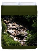 Blackwater Canyon #4 Duvet Cover