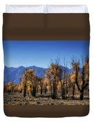 Blazing Cottonwoods Duvet Cover