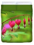 Bleeding Hearts - Lamprocapnos-spectabilis Duvet Cover