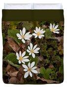 Bloodroot Wildflowers #1203 Duvet Cover