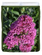 Blooming Pink Phlox Flowers In A Spring Garden Duvet Cover