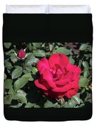 Blooming Rose With New Rose In Garden Duvet Cover