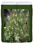 Blooming Succulent Plant. Big And Beautiful Duvet Cover