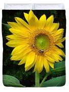 Blooming Sunflower Closeup Duvet Cover