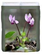 Blossom Of Cyclamens Duvet Cover