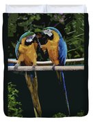 Blue And Gold Macaw 1 Duvet Cover
