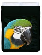 Blue And Gold Macaw Freehand Painting Square Format Duvet Cover
