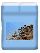 Blue And Tan Duvet Cover