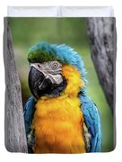 Blue And Yellow Macaw Portrait  Duvet Cover