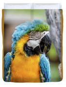 Blue And Yellow Macaw Vertical Duvet Cover