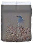 Blue Bird Colored Pencil Duvet Cover