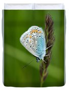 Blue Butterfly On Grass Duvet Cover