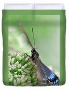 Blue Butterfly On Sedum Duvet Cover