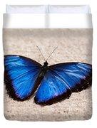Blue Buttterfly Duvet Cover