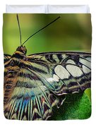 Blue Clipper - Looking Up Duvet Cover