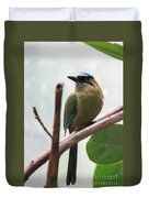 Blue-crowned Motmot Duvet Cover