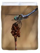 Blue Dragonfly On Brown Reed Duvet Cover