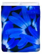 Blue Daisies, Medford Oregon Duvet Cover