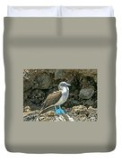Blue Footed Boobie Duvet Cover