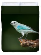 Blue-gray Tanager Thraupis Episcopus Duvet Cover