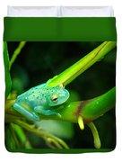 Blue-green Tropical Frog Duvet Cover