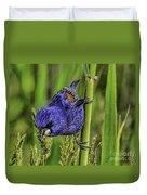 Blue Grosbeak On A Reed Duvet Cover
